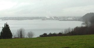 A lovely view of the Port of Everett.